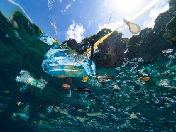 El Mediterráneo ya es el mar más contaminado del planeta