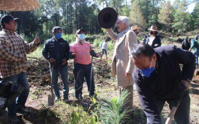 Se compromete Jiménez Romero apoyar la reforestación en tramo de la Malinche