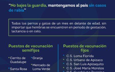 ¡Lleva a vacunar a tus mascotas!; inicia en Apizaco Jornada Nacional de vacunación antirrábica