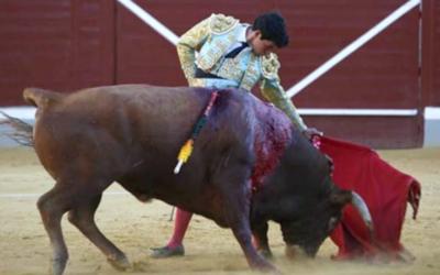 TRIUNFA EN ESPAÑA L NOVILLERO ISAAC FONSECA