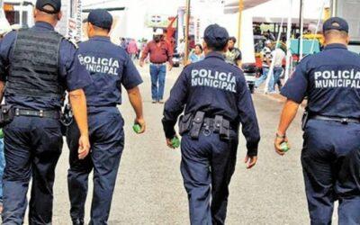 Ante el incremento de robo a parcelas, se realizarán rondines en Tocatlán